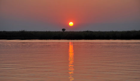 Chobe River - Sunrise from restaurant
